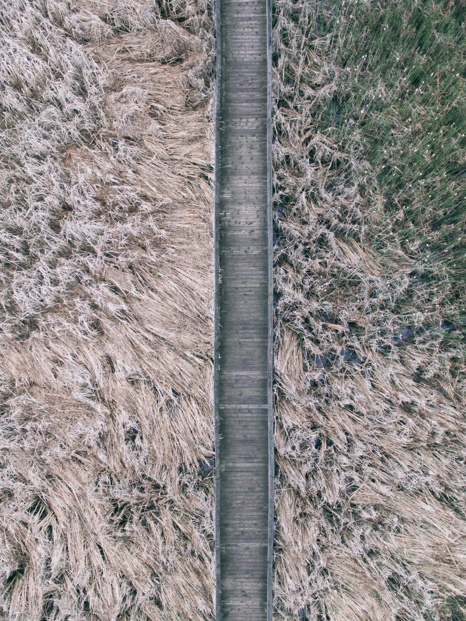usucapione strada allargata su mio terreno